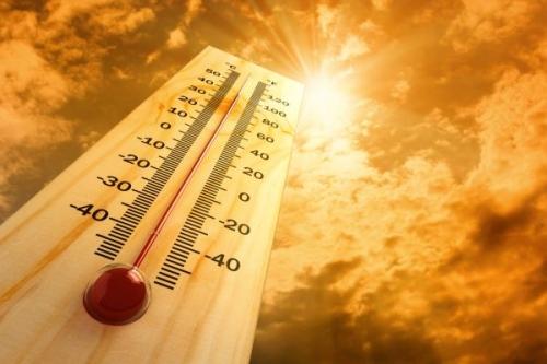 Аномальная жара до +41°c установилась в алматинском регионе