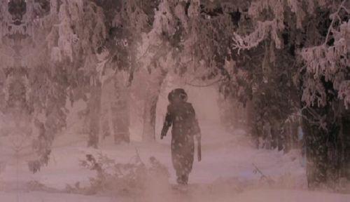 Борьба с последствиями снегопада в столице