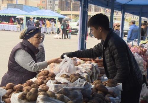 Фермеры алматинской области привезли на ярмарку в астану 323 тонны продукции