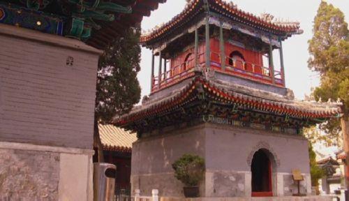 Мусульмане китая отмечают праздник жертвоприношения