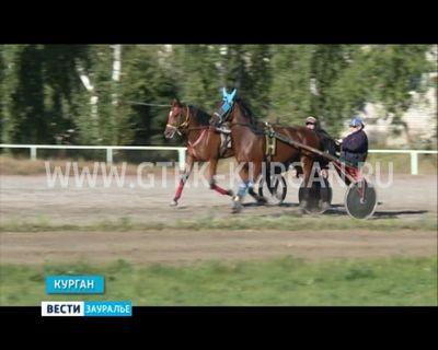 P /в субботу в кургане впервые пройдёт матчевая встреча российских и финских наездников. - «спорт»