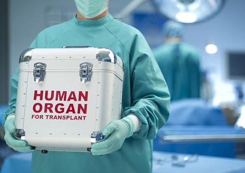 В израиле зарегистрировано рекордное количество операций по пересадке органов