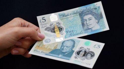 Вегетарианцы великобритании выступают против 5-фунтовой купюры