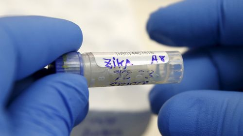 Вирус зика опаснее, чем думали ученые